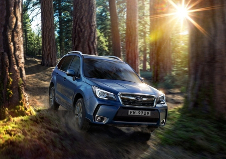 Forester3